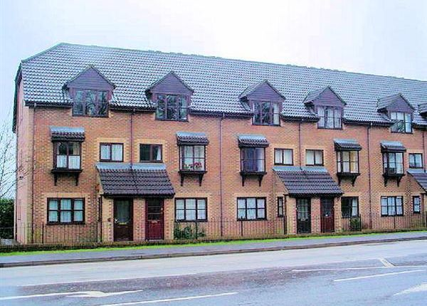 Thumbnail Property to rent in Chalet Court, Bordon