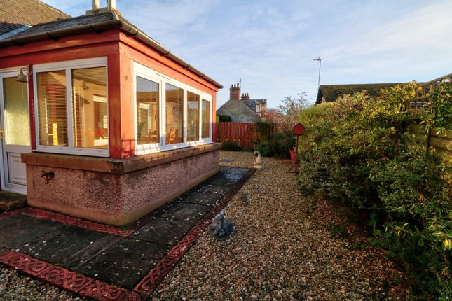 Reargarden of Bents Road, Montrose DD10