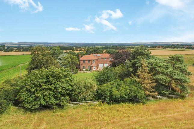Thumbnail Detached house for sale in Millfield, Sherburn, Malton
