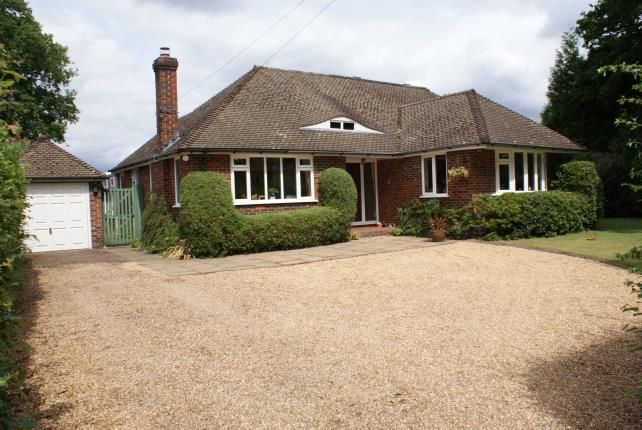 Thumbnail Bungalow for sale in Sutton Green, Woking, Surrey
