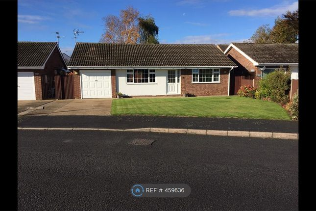 Thumbnail Bungalow to rent in West Road, Ruskington, Sleaford