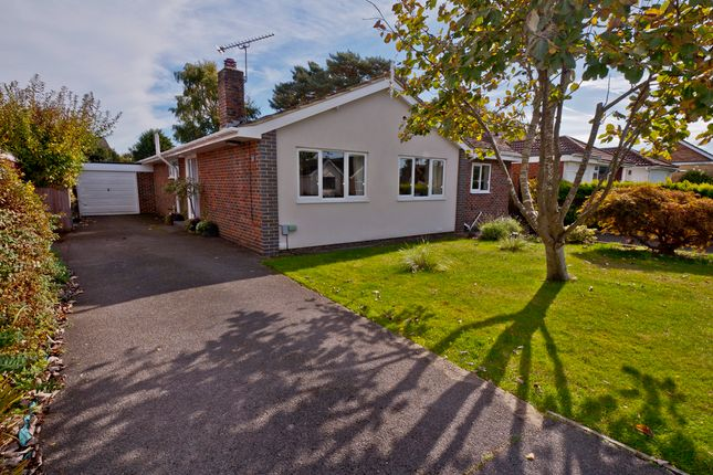 Thumbnail Detached bungalow for sale in East Lodge, Catisfield, Fareham