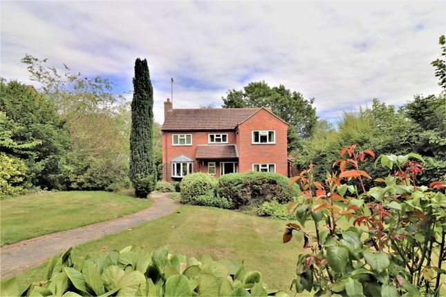 Thumbnail Detached house for sale in Castle Road, Hadleigh, Ipswich, Suffolk