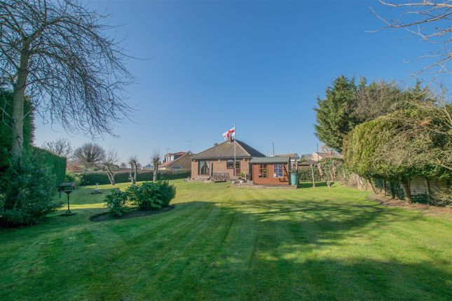 Thumbnail Detached bungalow for sale in Western Road, Nazeing, Waltham Abbey