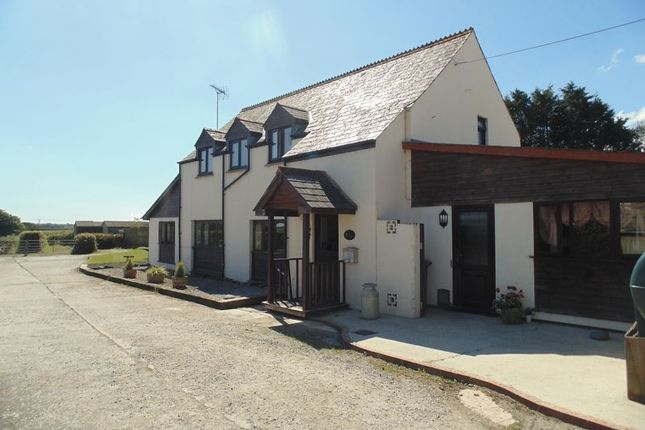 Thumbnail Equestrian property for sale in Fore Street, Langtree, Torrington