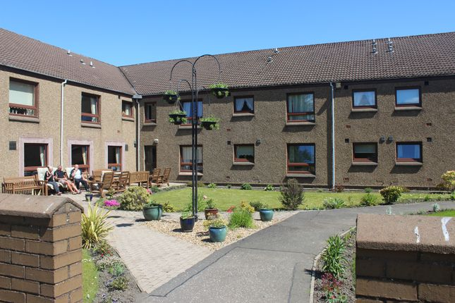 Studio to rent in Devlin Court, Whins Of Milton, Stirling FK7