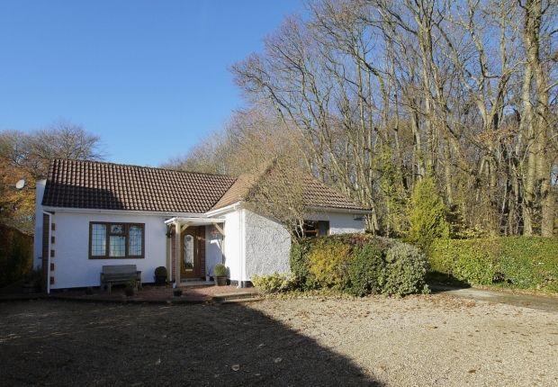 Thumbnail Detached bungalow for sale in Ide Hill Road, Sundridge, Sevenoaks