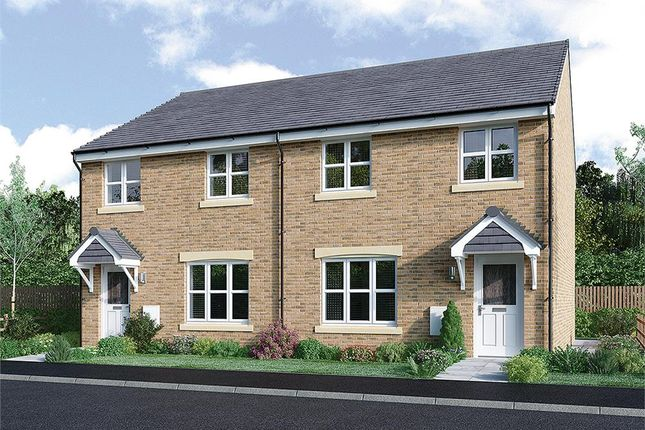 "Semi-detached house for sale in ""Meldrum Semi"" at Bartonshill Way, Uddingston, Glasgow"