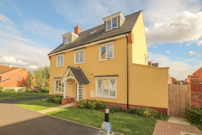 Thumbnail Detached house for sale in Saints Walk, Kedington, Haverhill