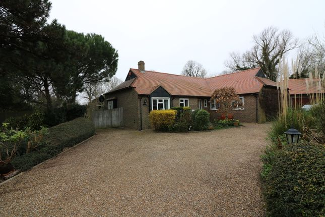 Thumbnail Detached bungalow to rent in Whitefriars Meadow, Sandwich