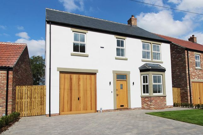 Thumbnail Detached house for sale in 11 The Green, Pickhill, Thirsk