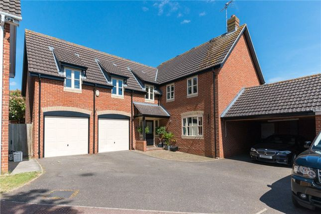 Thumbnail Detached house for sale in Chaffinch Way, Halstead, Essex
