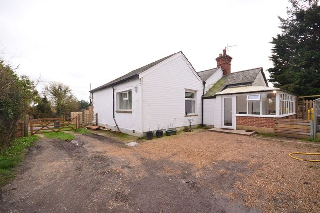 Thumbnail Bungalow to rent in Selsey Road, Hunston, Chichester