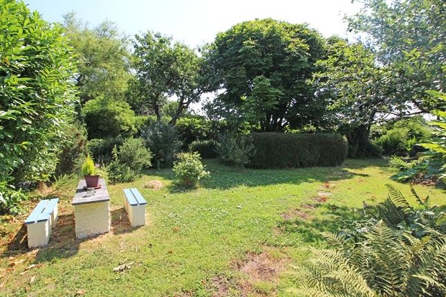 Picture 2 of Bridgerule, Holsworthy EX22