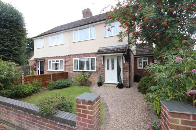 Thumbnail Semi-detached house for sale in Sheridan Walk, Colchester, Essex