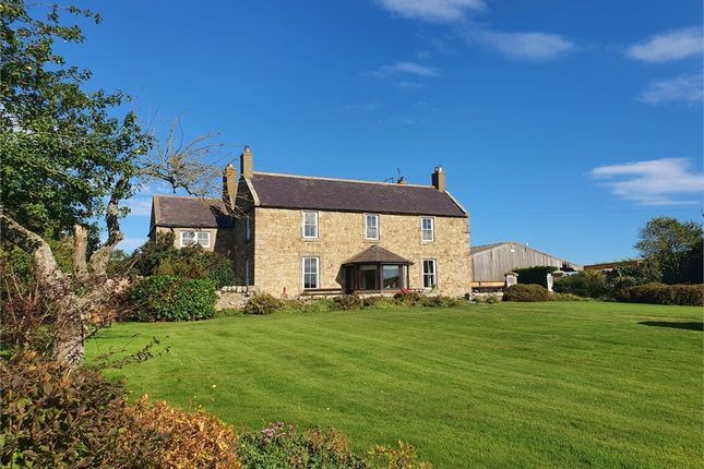 Thumbnail Detached house to rent in Norham, Berwick-Upon-Tweed