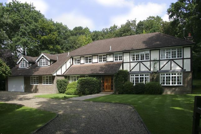 Thumbnail Detached house to rent in Albany Close, Esher