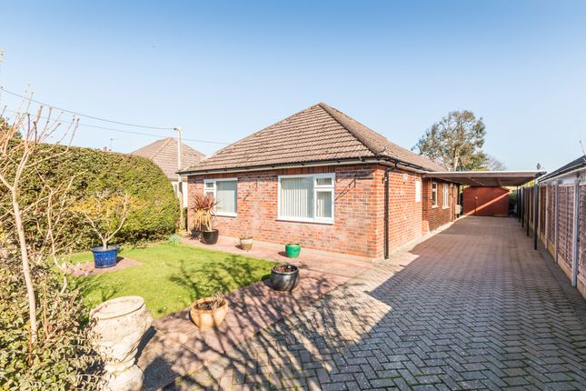 Thumbnail Detached bungalow for sale in Lumby Drive, Ringwood