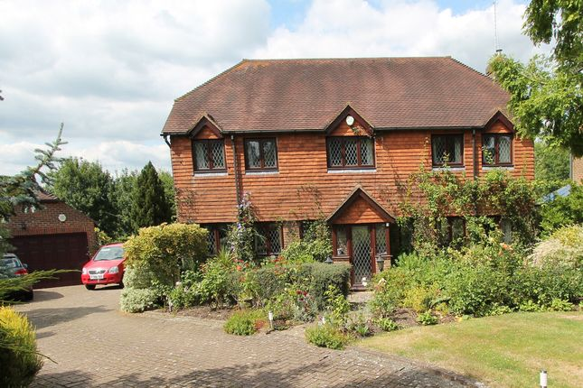 Thumbnail Detached house for sale in Oakland Drive, Robertsbridge