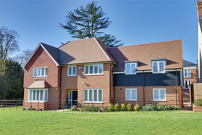 Thumbnail Detached house for sale in Terlings Avenue, Gilston, Hertfordshire