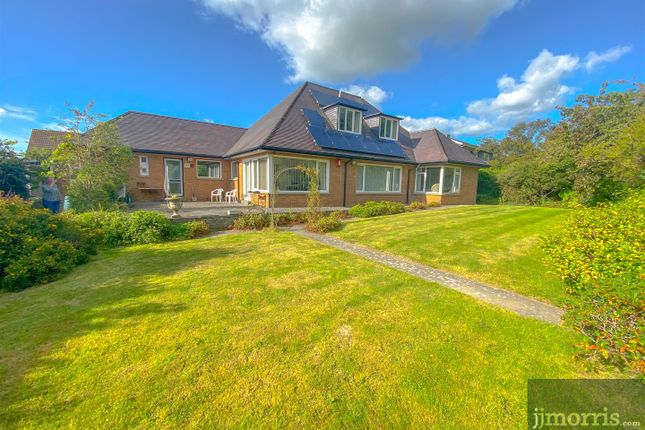 Thumbnail Detached house for sale in Brynhafod, Cardigan