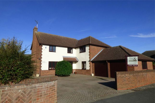 Thumbnail Detached house for sale in Sheepfold, St. Ives, Huntingdon