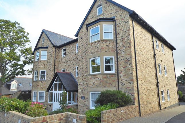 2 bed flat to rent in Holly Court South, Hexham NE46