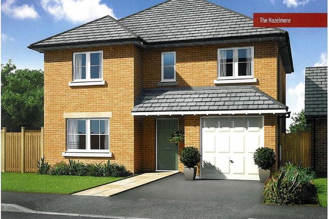 Thumbnail Detached house for sale in Waingroves Road, Waingroves, Ripley