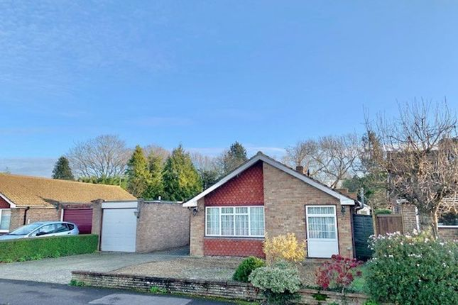 Thumbnail Detached bungalow for sale in St. James Close, Twyford, Reading