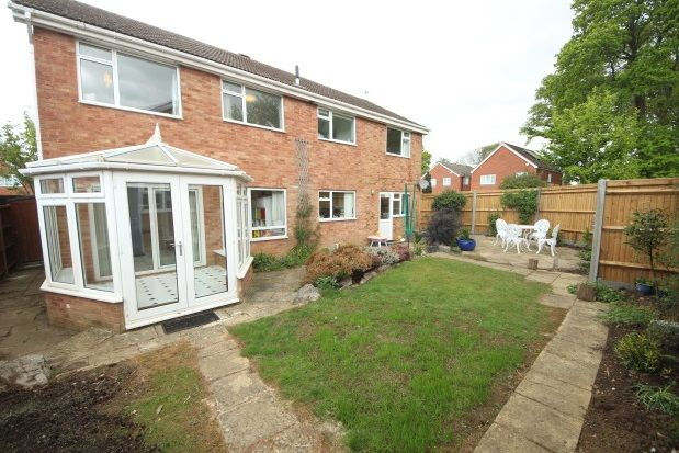 Thumbnail Property to rent in Rodney Way, Guildford