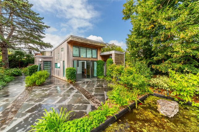 Thumbnail Detached bungalow to rent in Deepdene Park, St. Leonards, Exeter