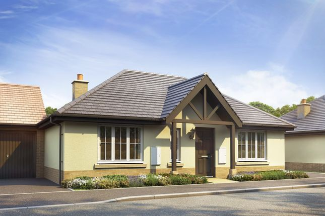 """Thumbnail Bungalow for sale in """"Wellow"""" at Stansted Road, Elsenham, Bishop's Stortford"""