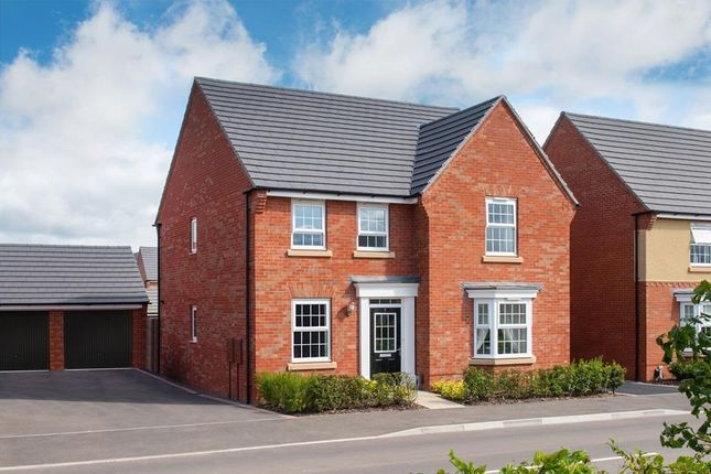 """Thumbnail Detached house for sale in """"Holden"""" at Crick Road, Hillmorton, Rugby"""