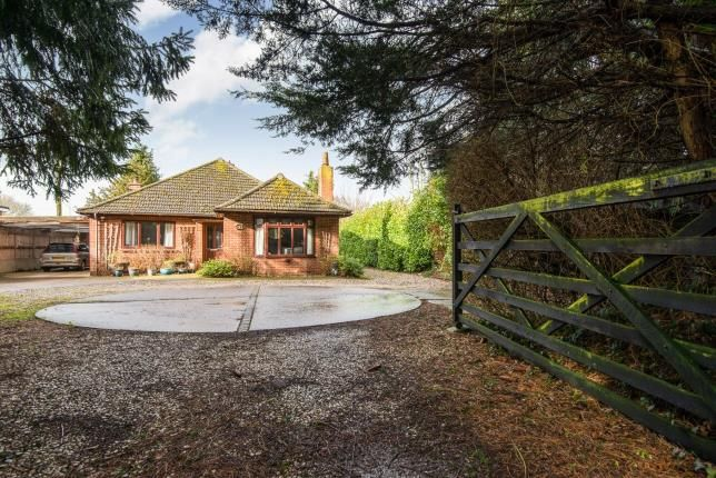 Thumbnail Bungalow for sale in Barnham Broom, Norwich, Norfolk