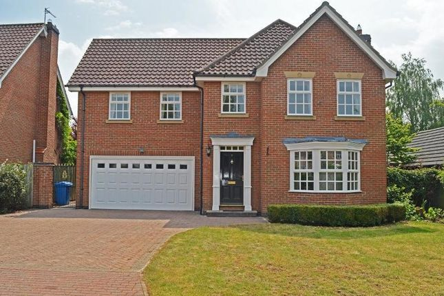 Thumbnail Detached house to rent in Woodhall Park, Beverley