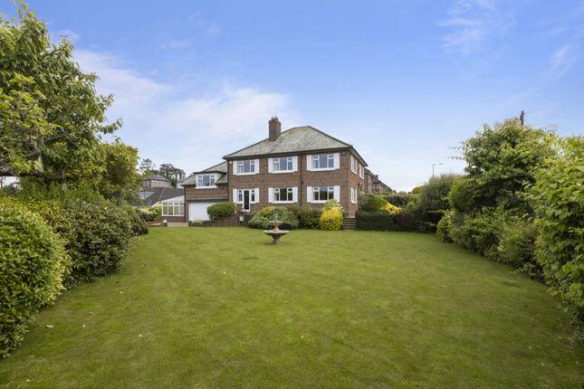 Thumbnail Detached house for sale in Kensington Park, Bangor