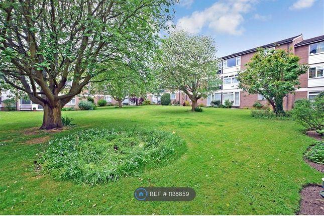 2 bed flat to rent in Tonbridge Road, Maidstone ME16