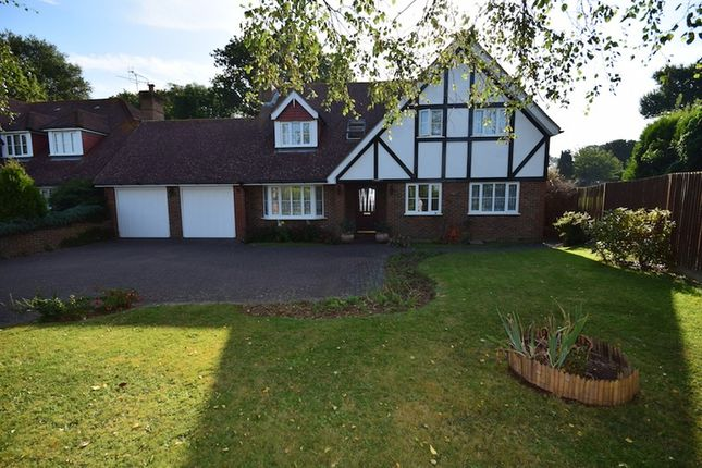 Thumbnail Detached house for sale in Ellerslie Lane, Bexhill-On-Sea, East Sussex