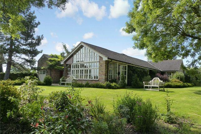 Thumbnail Detached bungalow for sale in St Margarets, Great Gaddesden, Hemel Hempstead, Hertfordshire