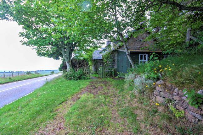 Thumbnail Cottage for sale in Loth School House, Loth, Helmsdale