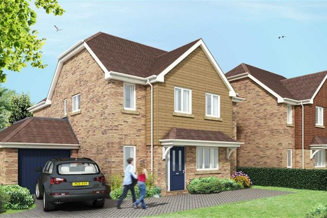 Thumbnail Detached house for sale in Farmers Walk, Everton, Lymington