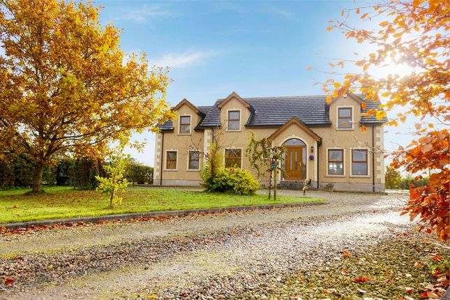 Thumbnail Detached house for sale in Bann Road, Ballymoney, County Antrim