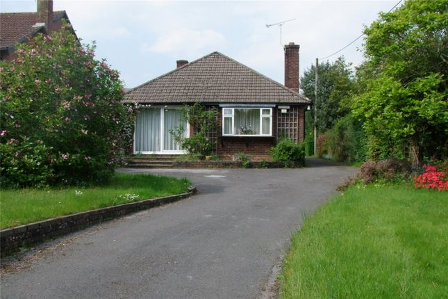 3 bed detached bungalow for sale in Longmoor Road, Liphook, Hampshire
