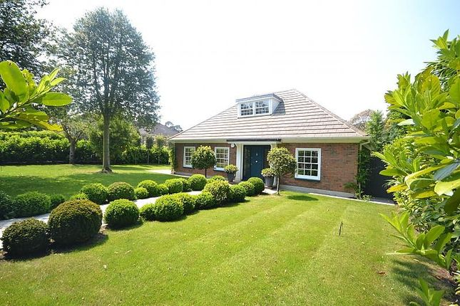 Thumbnail Detached bungalow for sale in Clevedon, Weybridge