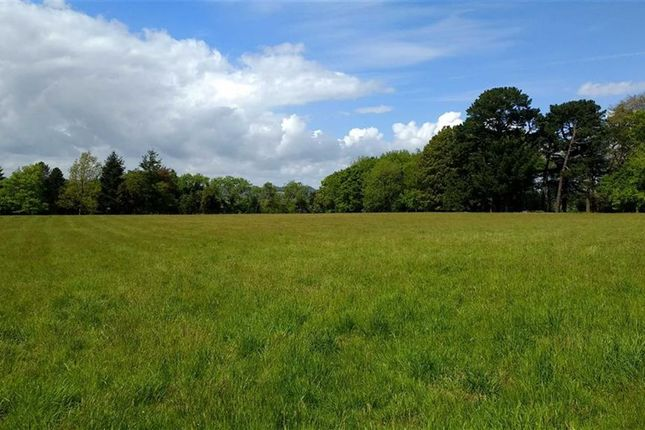 Thumbnail Land for sale in Hatch Lane, Liss, West Sussex