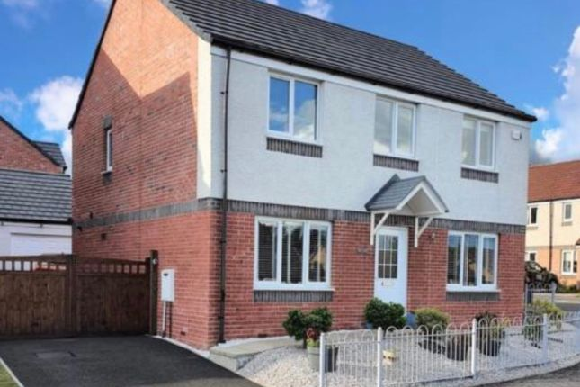 Thumbnail Detached house for sale in Rodel Drive, Polmont