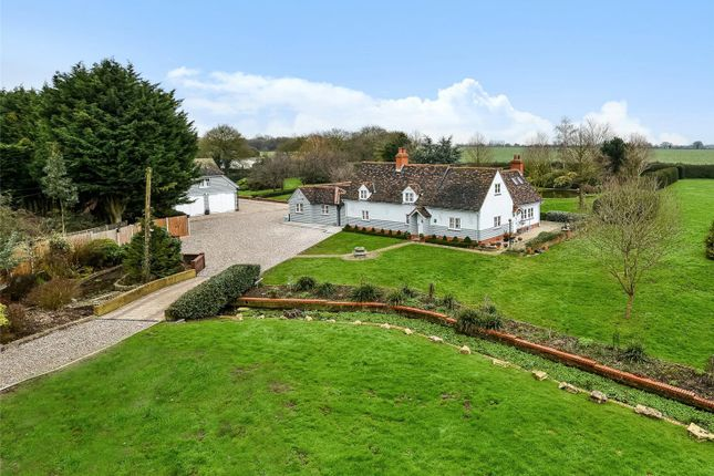 Thumbnail Detached house for sale in Mill Street, Harlow, Essex