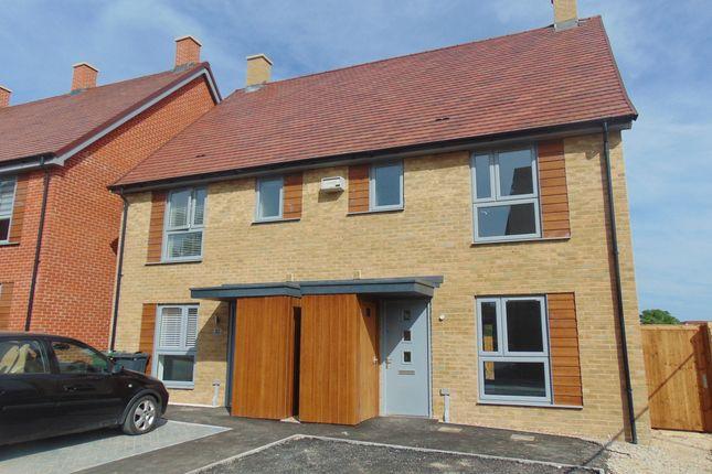 Thumbnail Semi-detached house to rent in John Amoor Lane, Ashford