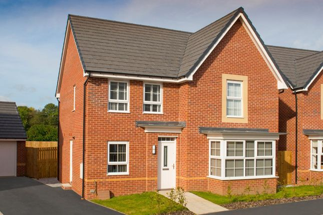 "Thumbnail Detached house for sale in ""Cambridge"" at Park Hall Road, Mansfield Woodhouse, Mansfield"