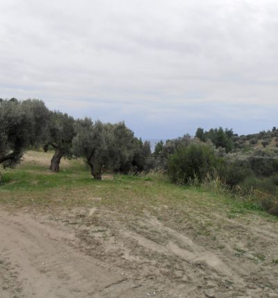 Thumbnail Land for sale in Kryopigi, Chalkidiki, Gr